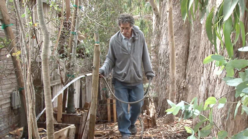 Bob Pacelli Watering His Trees Sanctuary