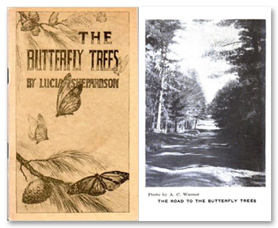 1914 Butterfly Trees by Lucia Shepardson Book Cover